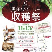 兎田ワイナリー収穫祭…
