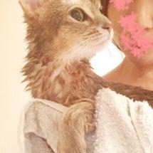 一緒にお風呂に入った…