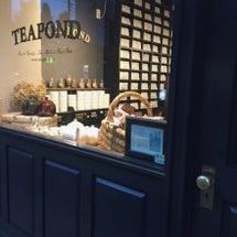 紅茶専門店へ