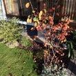 庭の様子と玄関ポスト