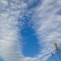 翼を広げたような雲