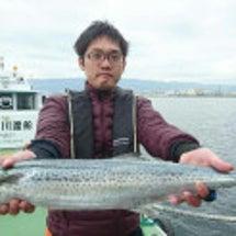 25日 武庫川渡船 …
