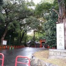 京都・下鴨神社へ