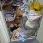 ゴミ屋敷化住居の緊急…
