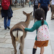 鹿のお尻とネクストバ…