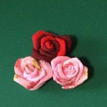 深紅とピンクの薔薇 …