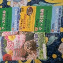 富士花鳥園♪&情報も…