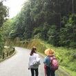 熊野古道を歩く3 新…