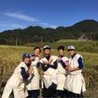 稲刈り 【#24 川…
