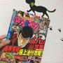 【パチマガ】最新号本…