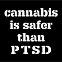 PTSDの改善に大麻…