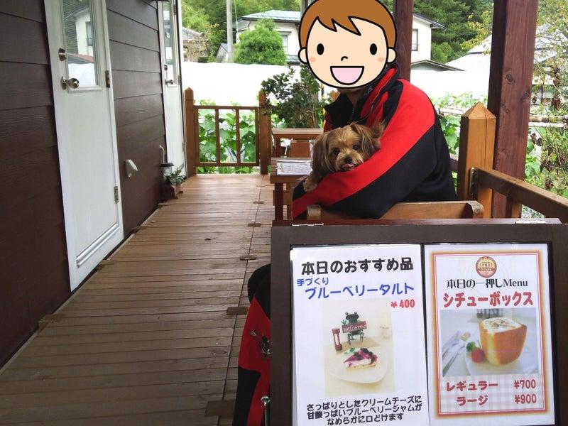天栄村 カフェ