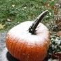 10月なのに、、、雪…