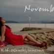 11月のメッセージボ…