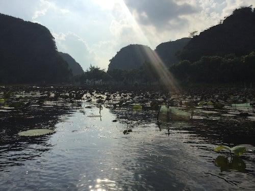 ベトナム タムコック川下り