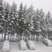 札幌は雪!!