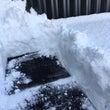 札幌 積雪