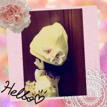 お花モチーフ編んでみ…