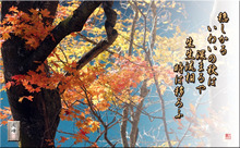フォト短歌「いわいの秋」