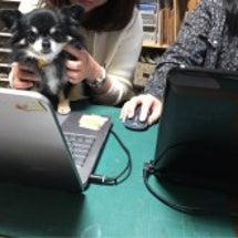 パソコン…勉強中