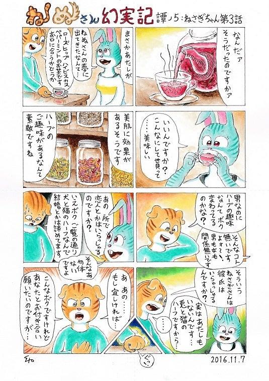 ねぬさん幻実記 譚ノ5:ねさぎちゃん第3回.jpg