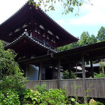 静岡の城・史跡巡りは…