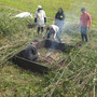 荒れた竹林の整備・大…