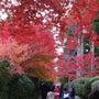 和歌山にいってきまし…