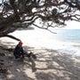 遠浅の砂浜から大真鯛…