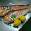 ☆~本日の鮮魚~☆