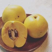花梨のサンド