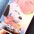 Snoopy Fam…