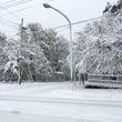 積雪20㎝