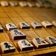 今日  将棋の日です…
