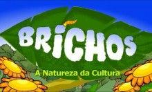 BRICHOS - a natureza da cultura.jpg