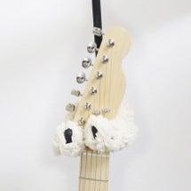 ギターのブラジャー …