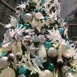 クリスマスツリーを見…