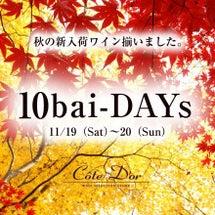 11/19(土)〜2…