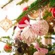 クリスマスツリーに飾…
