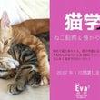 猫学 ねこ飼育&預か…