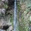 滝行を体験しました。