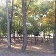 堺市お写真スポット