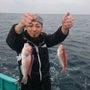 今日は釣り物紹介です…