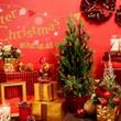 クリスマスに向かって