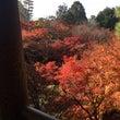 ★京都の紅葉★