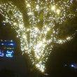 天神のクリスマスの灯…