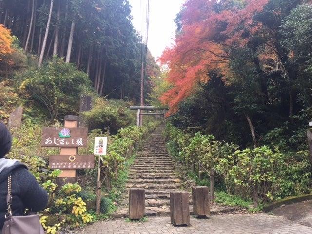 大平山20