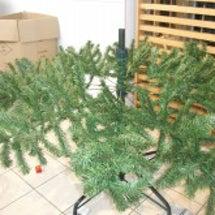 クリスマスツリー設置