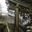 念願の玉置神社