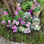 玄関前の日陰の庭の植…